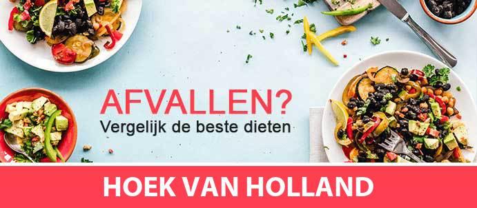 afvallen-diëtist-hoek-van-holland-3151