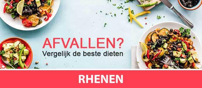 afvallen-diëtist-rhenen-3911