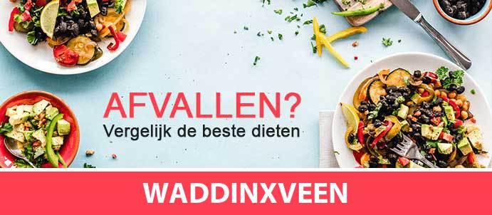 afvallen-diëtist-waddinxveen-2741