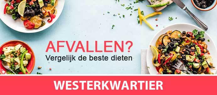 afvallen-diëtist-westerkwartier-9861
